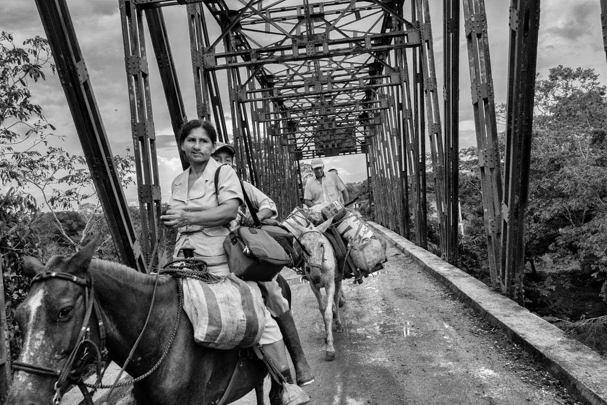 CAQUETA, COLOMBIA, - NOVEMBER 2013: A group of civilians on horseback crossing a bridge on November 2013 in La Unión Peneya, Caqueta, Colombia. The FARC South Block commands the main historical FARC strongholds; places which have lived under in a parallel state to the rest of Colombia during these decades of conflict. Society there has only ever experienced war in living memory and who have never known the state authority except his military role, accused of having committed in this region numerous human rights violations. A society stigmatized. A society that has positioned itself , due to family ties built during the last 50 years, closer to the policy option of the FARC guerrilla and sees in the peace negotiations a chance that the weapons are left in exchange for a political choice. The possibility of a split within the rebel group, to coincide with its fiftieth anniversary, is a very real possibility. This would inevitably put the peace negotiations in Havana in a difficult position as well as the local population of these regions.