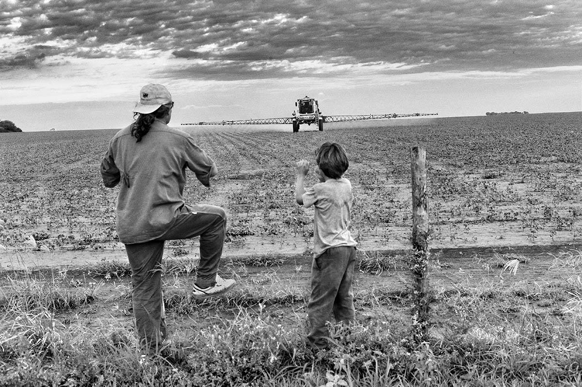 QUIMILI, SANTIAGO DEL ESTERO, ARGENTINA - DECEMBER 2012: Paulo and his grandson look out over a field that is being sprayed. Most of the properties of small farmers who have withstood the pressure exercised by large landowners have been isolated and surrounded by the properties of large landowners. Only a few of them have resisted and only a few of them are fighting for their rights. The MO.CA.SE (Farmers' Movement of Santiago del Estero) is the only movement which officially supports the demands of farmers. However, the MO.CA.SE has its own political agenda, very close to the current government, that supports the intensive production model with the input of agrochemicals.