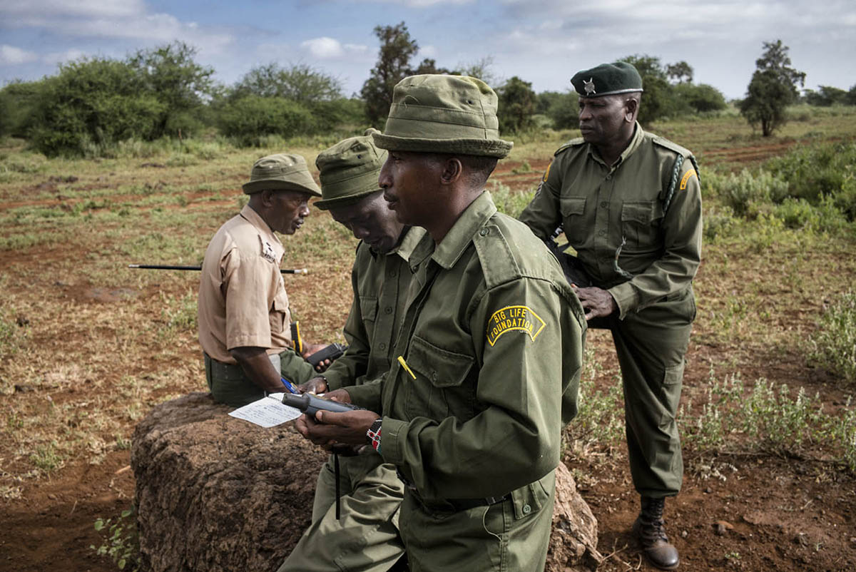 KENIA, AMBOSELI - FEBRUARY 2016: Captain Tim and his men Cassaina counts the number of animals they have observed in his sector. This practice is essential to avoid poaching in the area.