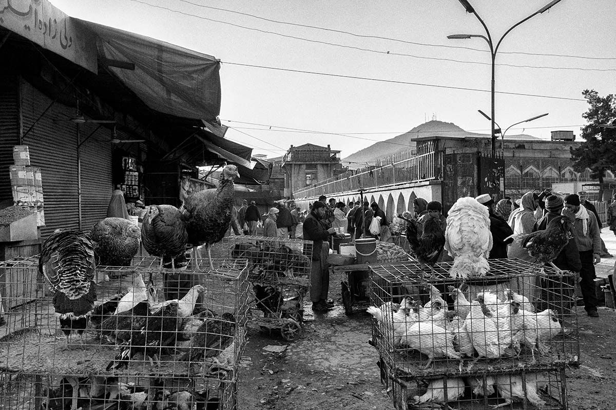 KABUL, AFGHANISTAN - FEBRUARY 2009: Old market in Kabul. Afghanistan has become the key war zone for the new US administration. After years of focus on Iraq, the US government has realized how critical an issue Afghanistan really is. It is a country all too used to broken promises, used to death and used to fighting for its survival. Afghans have increasingly lost hope, and have lost faith in the promises made by the Western World. They now seem focussed on daily survival despite the hardships and social issues that they face on a constant basis.