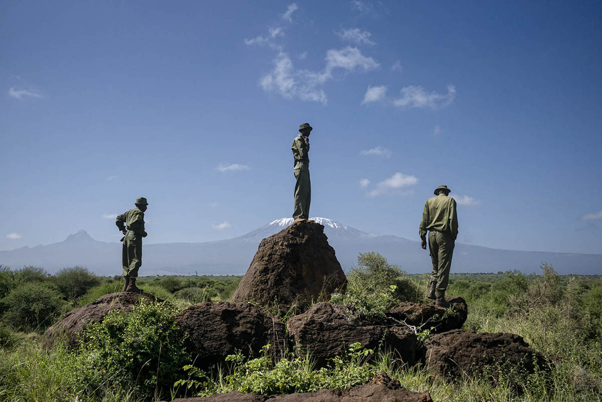 KENIA, AMBOSELI - FEBRUARY 2016: A group of Rangers from the Big Life Foundation Foundation during a patrol in the National Park Amboselli.
